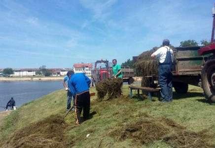 Počelo čišćenje jezera u Vršcu